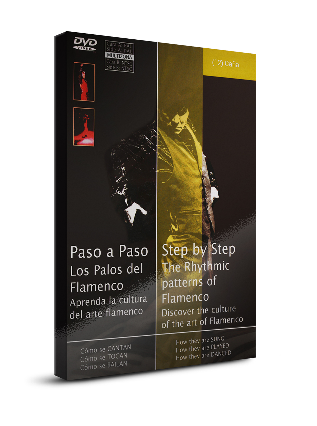 Flamenco Dance Classes Cana Dvd Dvd Dance La Sonanta Flamenco